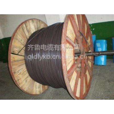 供应齐鲁牌铜芯聚乙烯绝缘聚乙烯护套交联电缆YJV32 4*16+1*10
