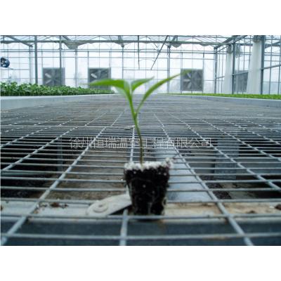 徐州恒瑞温室工程有限公司生产温室苗床 温室骨架18020587925