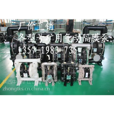 供应耗能小操作简便高效隔膜泵 BQG系列矿用气动隔膜泵