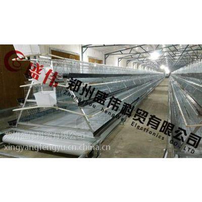 传送带清粪机,郑州盛伟生产,传送带清粪机视频