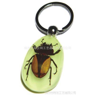 礼品加工 旅游纪念收藏品 昆虫标本人造琥珀钥匙扣 畅销全球