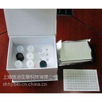 大鼠胰岛素自身抗体(IAA)ELISA试剂盒