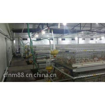喀什养鸡鸡笼厂,伊犁鸡笼厂,库尔勒蛋鸡笼,乌鲁木齐育雏笼,出口品质八钢钢材