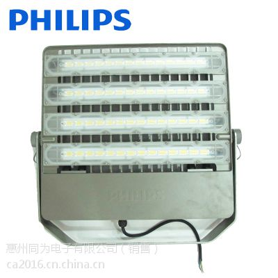 飞利浦BVP161 LED投光灯 30W 50W 110W 220W 投射灯户外防水