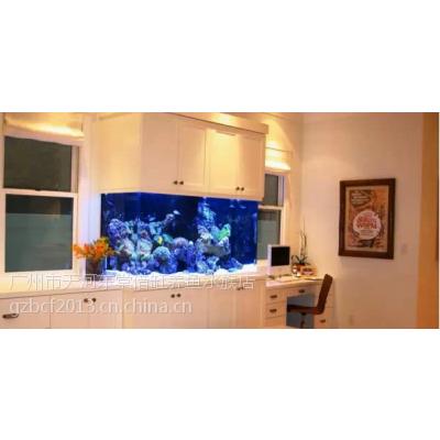 广州哪里有鱼缸店,广州定做海水鱼缸,海水观赏鱼缸定做超白玻璃制作,哪里定制海水超白鱼缸运输上门