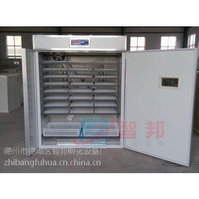 供应四川孵化机孵化设备、孵化机、孵化箱小型温控箱多功能孵化机