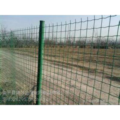 瑞才(1.0-1.8m)卷状绿色养殖浸塑荷兰网规格齐全