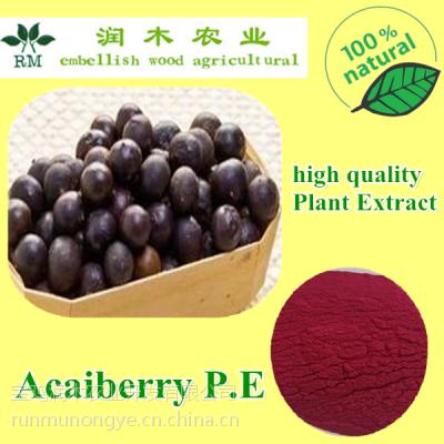 宝鸡润木 供应巴西莓提取物 巴西莓粉 阿萨伊粉 巴西莓原花青素25%