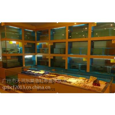 广州萝岗区哪里可以定做海鲜池,广州萝岗鱼缸店,玻璃海鲜鱼缸生产厂家,海鲜池定做