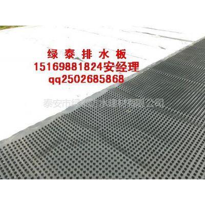 供应高密度聚乙烯【HDPE】排水板的作用是什么15169881824