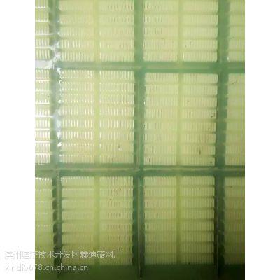 聚氨酯筛网厂家 脱水筛批发 牛筋筛板规格