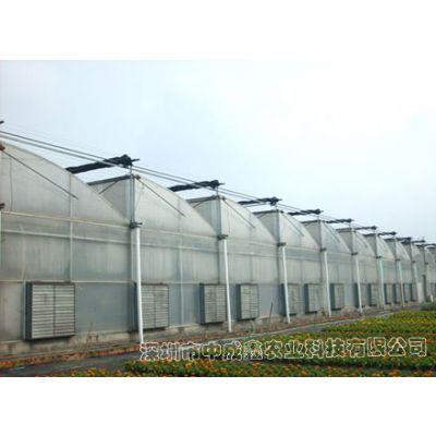 供应PC板&玻璃温室 蔬菜大棚 花卉种植 温室大棚建设