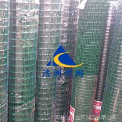 江西热销圈玉米专用网/绿色浸塑铁丝网/圈山散养鸡防护网/浩洲果园围栏