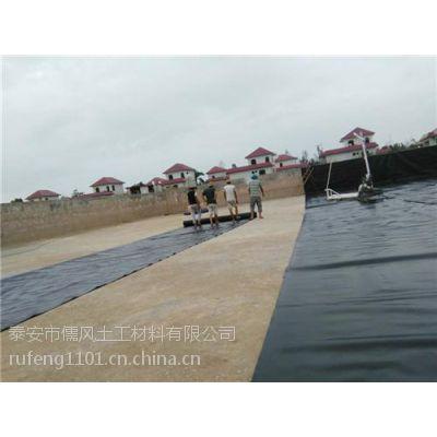 塘沽土工膜,儒风土工(图),藕池土工膜