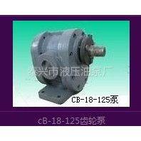 供应泰力CB-18-125带底脚齿轮油泵