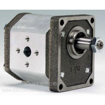 供应现货意大利原装马祖奇Marzocchi齿轮泵GHP2A-D-13-FG