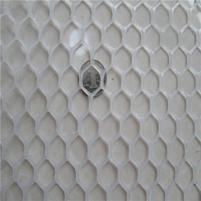 养宠物塑料平网 养殖塑料网 苗床网加工