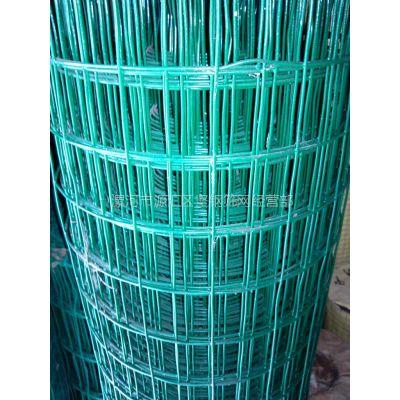 供应荷兰网 护栏网 钢丝网 防护网 隔离网 养殖网 铁丝网 围栏网