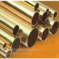 304不锈钢钛金管 优质产品厂家直销