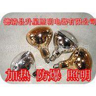 生产供应R125 加热照明 机制泡壳防爆 红外线灯泡