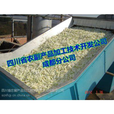 脱水蔬菜生产线,四川脱水蔬菜设备,脱水蔬菜加工成套设备
