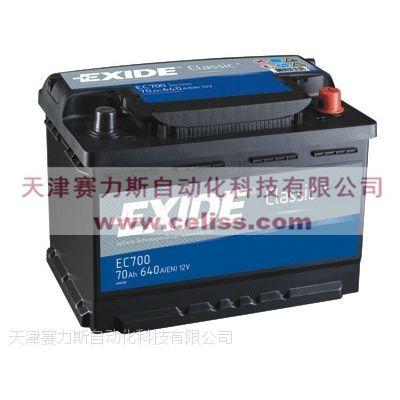高科技美国EXIDE蓄电池