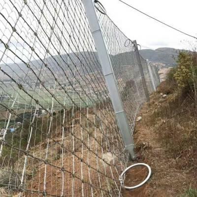 彭州被动边坡防护网供货商