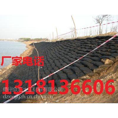 供应供应边坡防护丙纶生态袋 聚酯生态袋现货13181366065