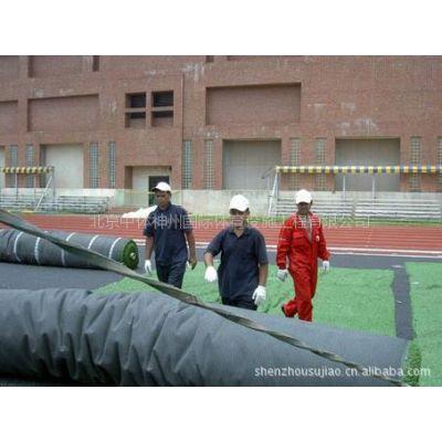 供应各种体育场地人工草/基础工程/专用设备租赁