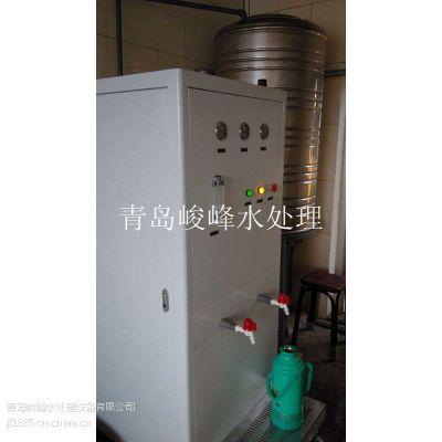 供应青岛宾馆酒店0.15吨直饮纯净水设备、纯水设备