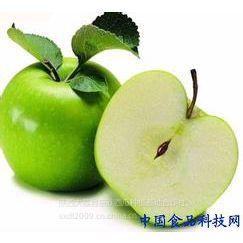 供应供应藤牧青苹果价格