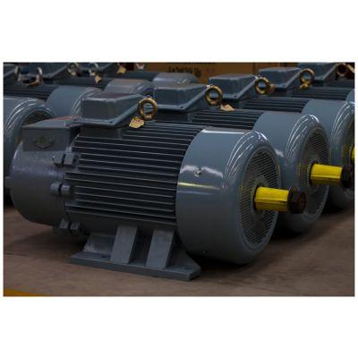 YZR 250S -6/55KW型绕线转子电机/起重冶金系列电机【 单轴 】天车提升电机