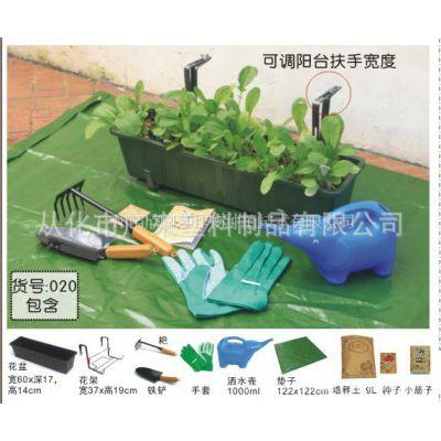 供应阳台小菜园 阳台种植蔬菜瓜果(20)