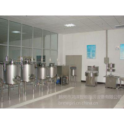供应微型自酿啤酒设备选择鸿洋公司