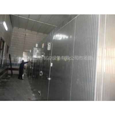 供应深圳西谷蜂产品冷链系统