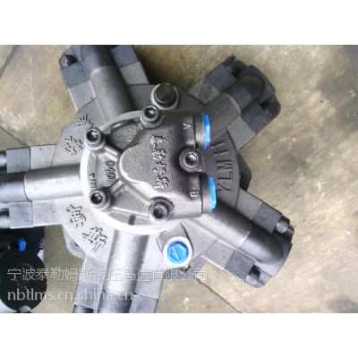 供应泰勒姆斯品牌YLM11-1300外五星液压马达YLM6-600液压马达