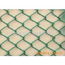 供应铁丝网,护拦网,网片,电焊网,电焊网片