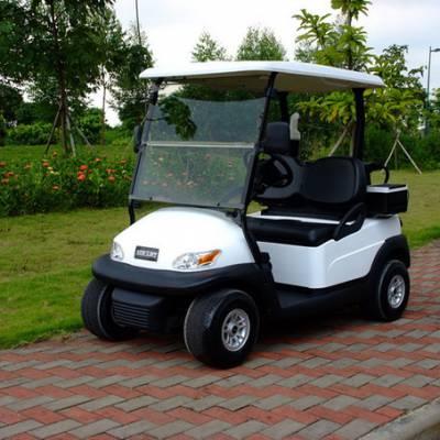 2座电动高尔夫球车EXCAR 进口配置 国际品牌设计