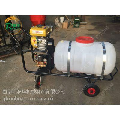农用小型打药车 推车式喷雾器 高压汽油喷雾机