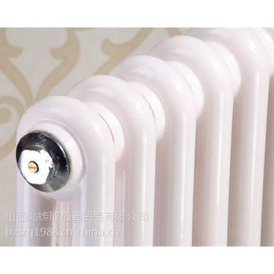 铸铁暖气片公司,铸铁暖气片,北铸散热器(在线咨询)