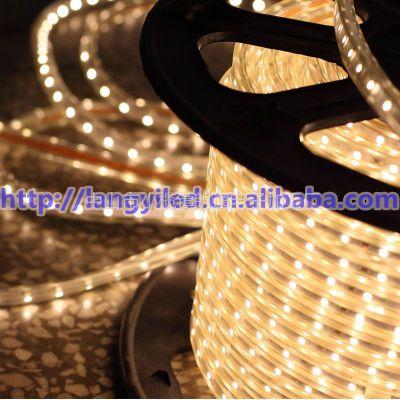 供应超低价 220V 高亮 3528 60灯 防水 贴片灯带 正白暖白 软灯条