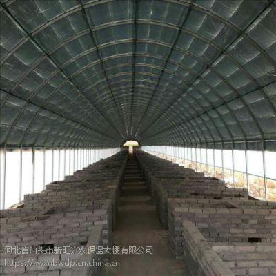 新旺兴农养殖大棚7219菱镁保温板房建设