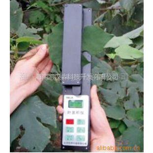 供应手持式活体叶面积测量仪