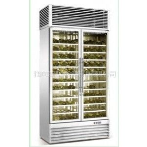 供应双门不锈钢红酒柜/压缩机/微电脑控温/风冷/型号BJ-960F