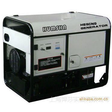 25kw燃气发电机组/双燃料燃气发电机/汽油发电机10kw