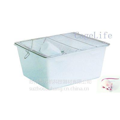 H1大鼠实验笼,聚丙烯PP方形塑料盒,不锈钢鼠笼网盖
