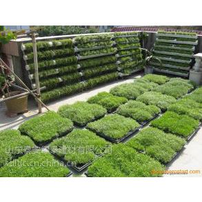 供台州车库绿化疏水板价格/舟山18H20H塑料夹层板