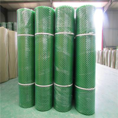 塑料防护网 塑料颗粒网 养鸡排粪网