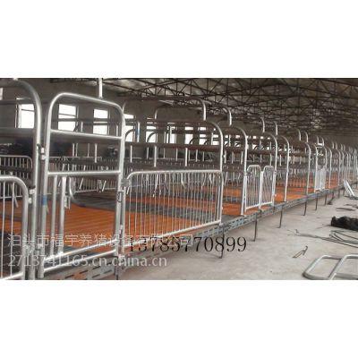 供应山西养猪设备 母猪产床 智能饲喂站 自动化料线 猪笼 保育床