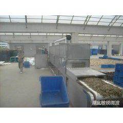供应隧道杀菌机,隧道干燥机,微波真空干燥机
